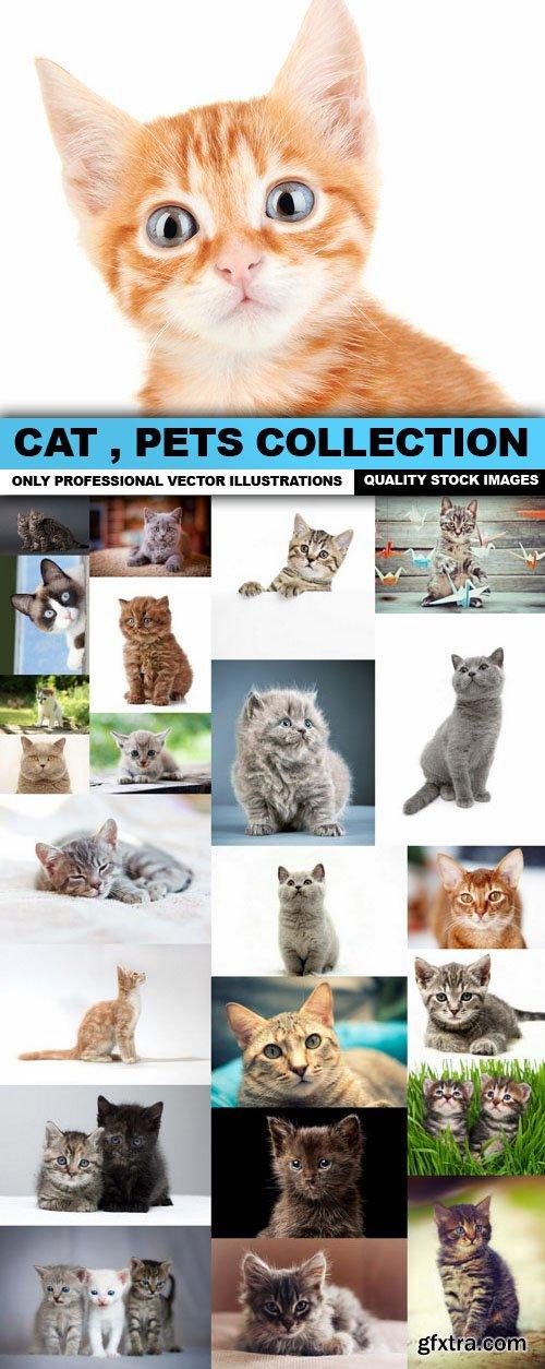Cat , Pets Collection - 25 HQ Images