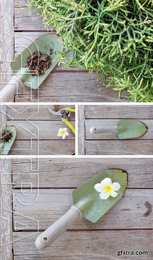 Stock Photos - Spoon shoveling and soil on wood