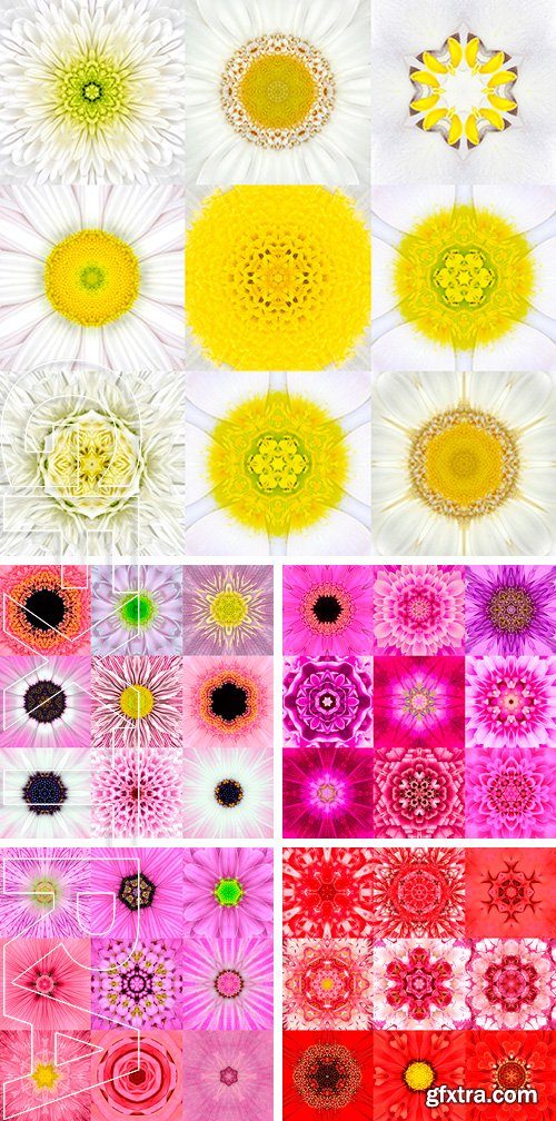 Stock Photos - Collection of Nine Concentric Flower. Kaleidoscope Concentric design. Full Flower Background