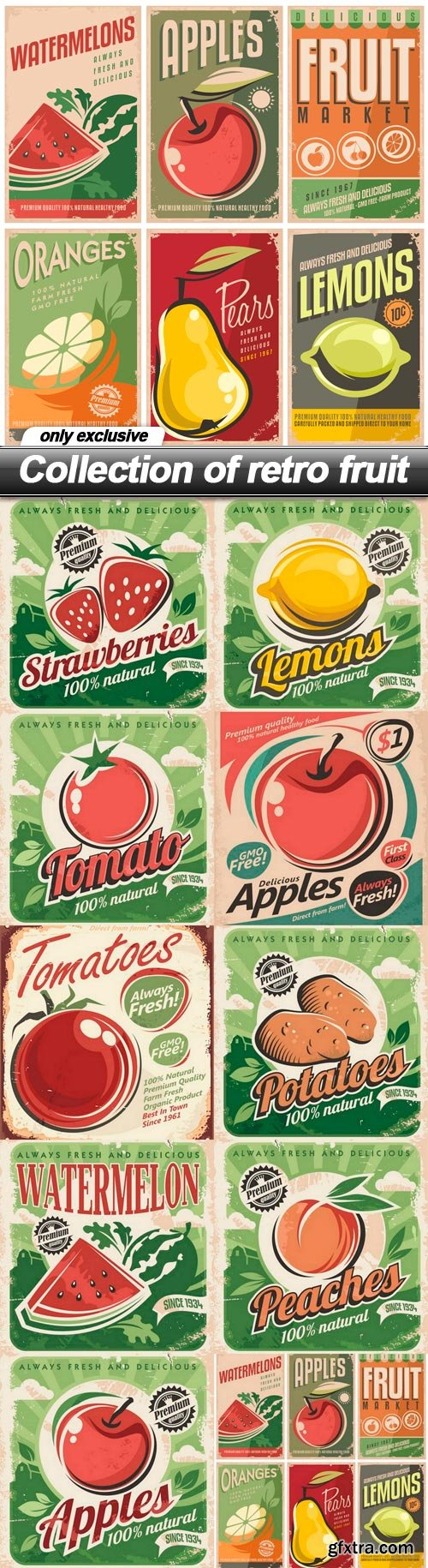 Collection of retro fruit - 10 EPS