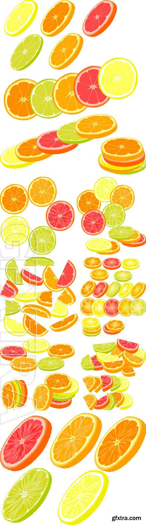Stock Vectors - Slices of different citrus fruits. Orange, grapefruit, lemon, lime