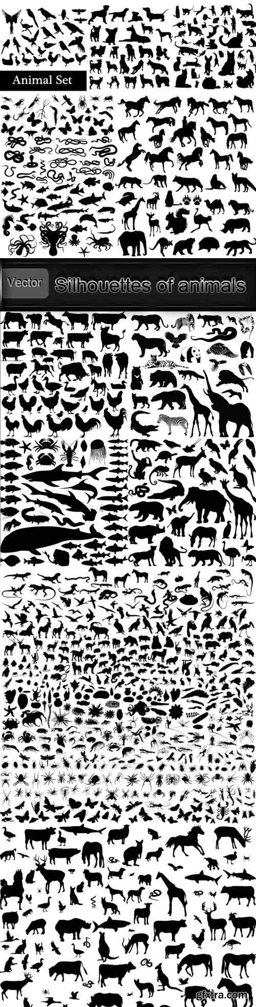 Silhouettes of animals and birds