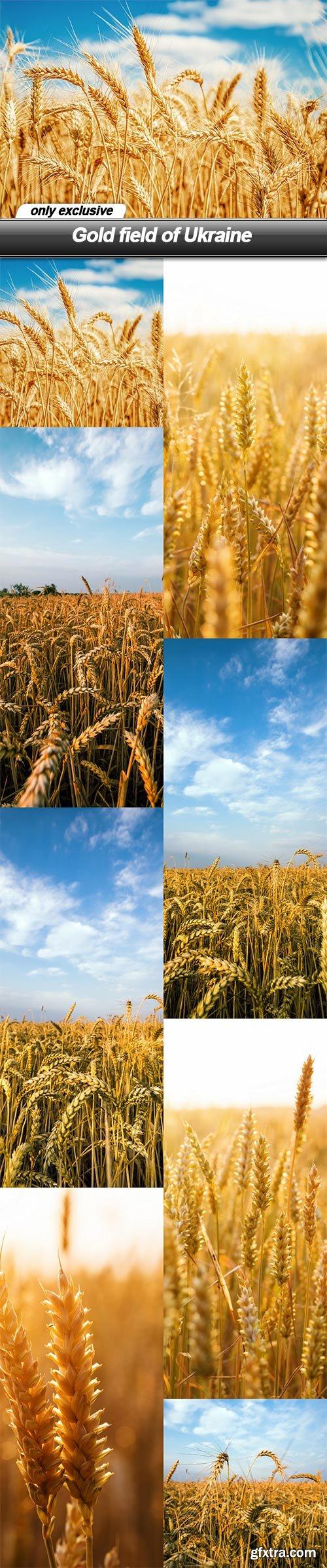 Gold field of Ukraine - 8 UHQ JPEG