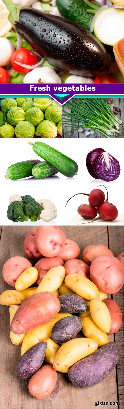 Fresh vegetables 8x JPEG