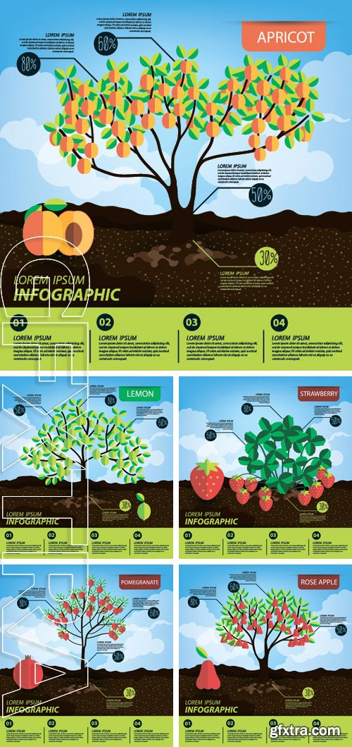 Stock Vectors - Infographics, fruits vector illustration