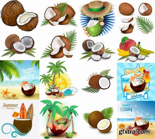 Collection of vector image coconut coconut juice pulp nut 25 EPS