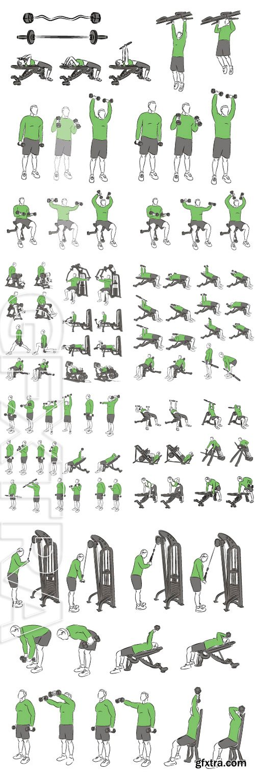 Stock Vectors - Set of systematic bodybuilding exercises