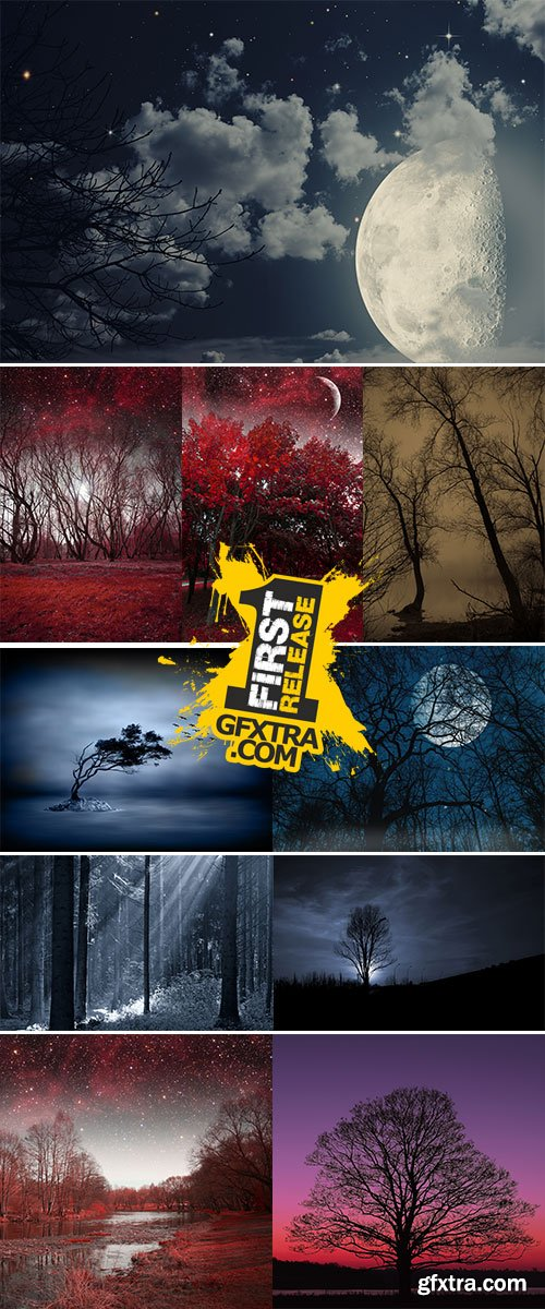 Stock Images Mystical spring night