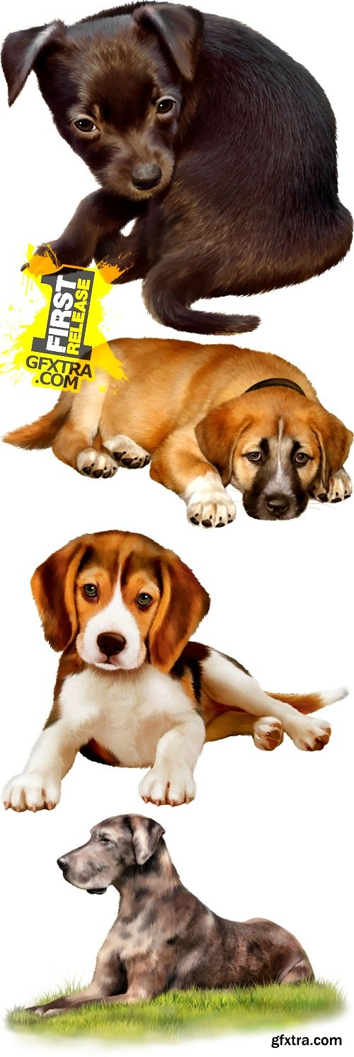 Realistic Dogs Vector