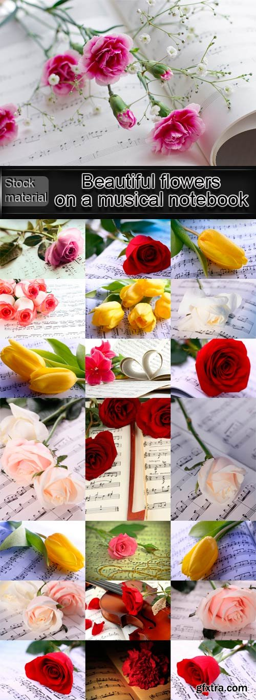 Beautiful flowers on a musical notebook