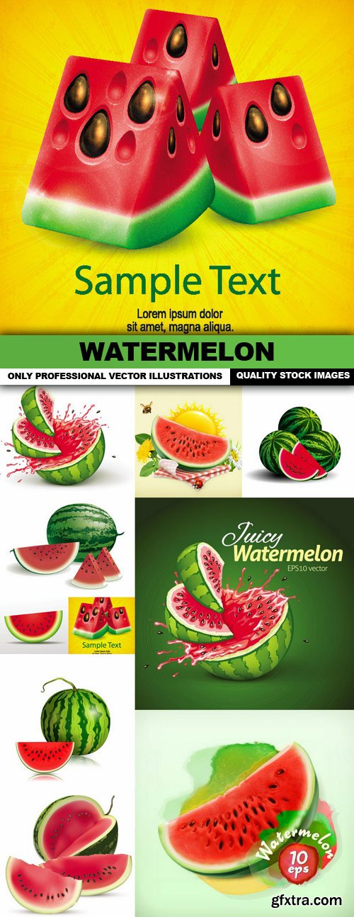 Watermelon - 10 Vector