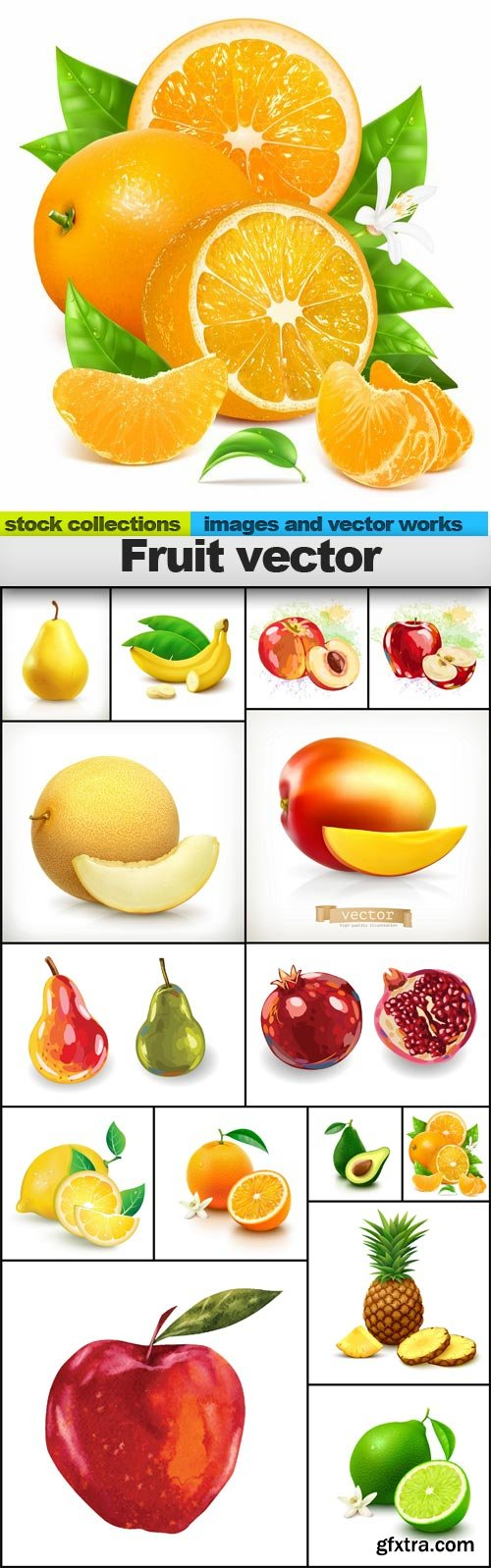 Fruit vector, 15 x EPS