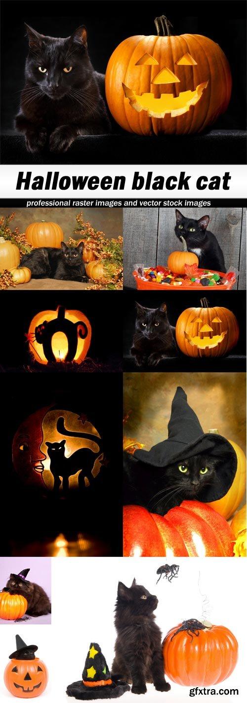 был представлен коты хэллоуин стих все просмотр этих
