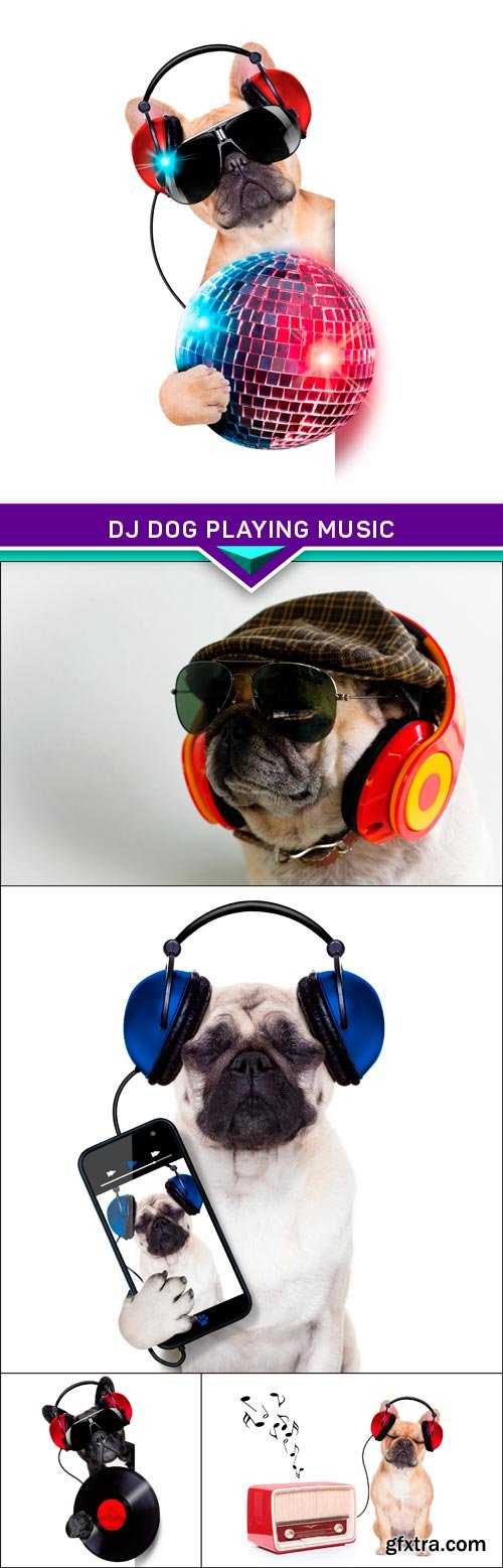 dj dog playing music 5x JPEG