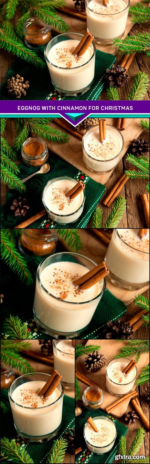Eggnog with cinnamon for Christmas and winter holidays 5x JPEG