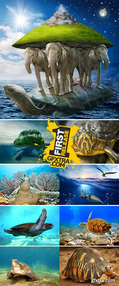 Stock Image Underwater world