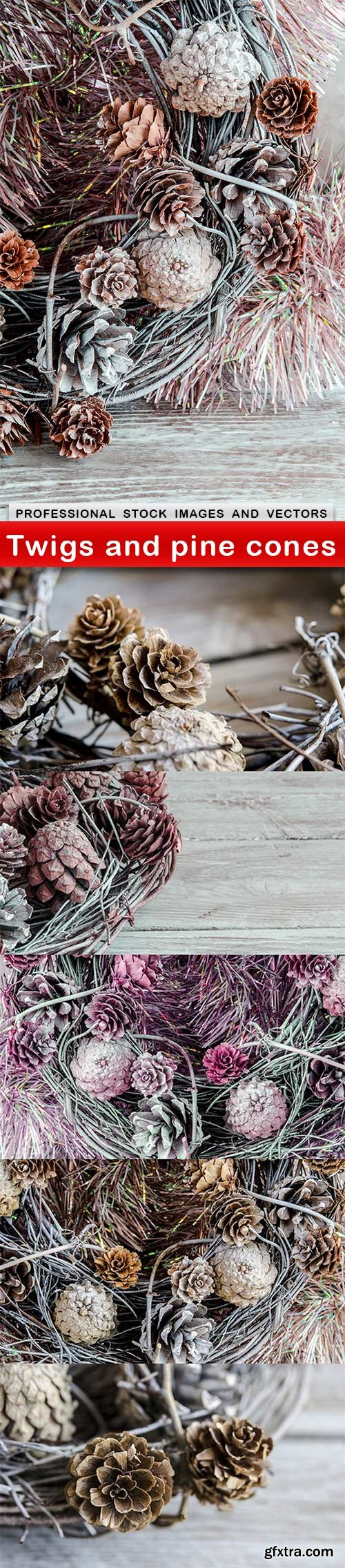 Twigs and pine cones - 6 UHQ JPEG