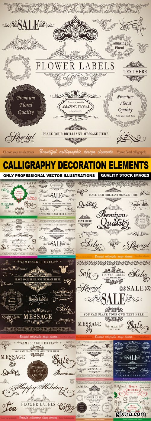 Calligraphy Decoration Elements - 12 Vector