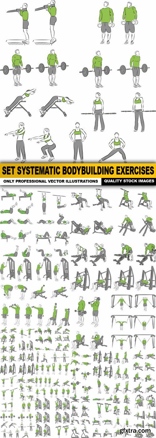 Set Systematic Bodybuilding Exercises - 17 Vector
