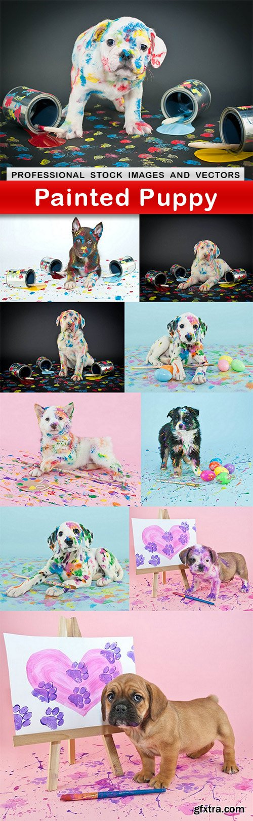 Painted Puppy - 10 UHQ JPEG