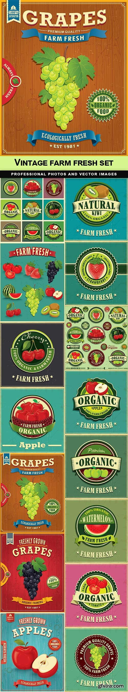 Vintage farm fresh set