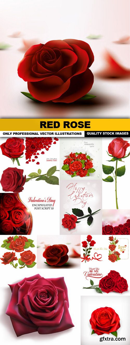 Red Rose - 15 Vector