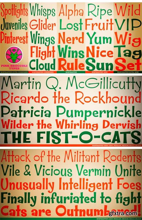 Whipsnapper Font Family