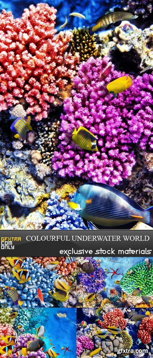 Colourful Underwater World - 5 UHQ JPEG
