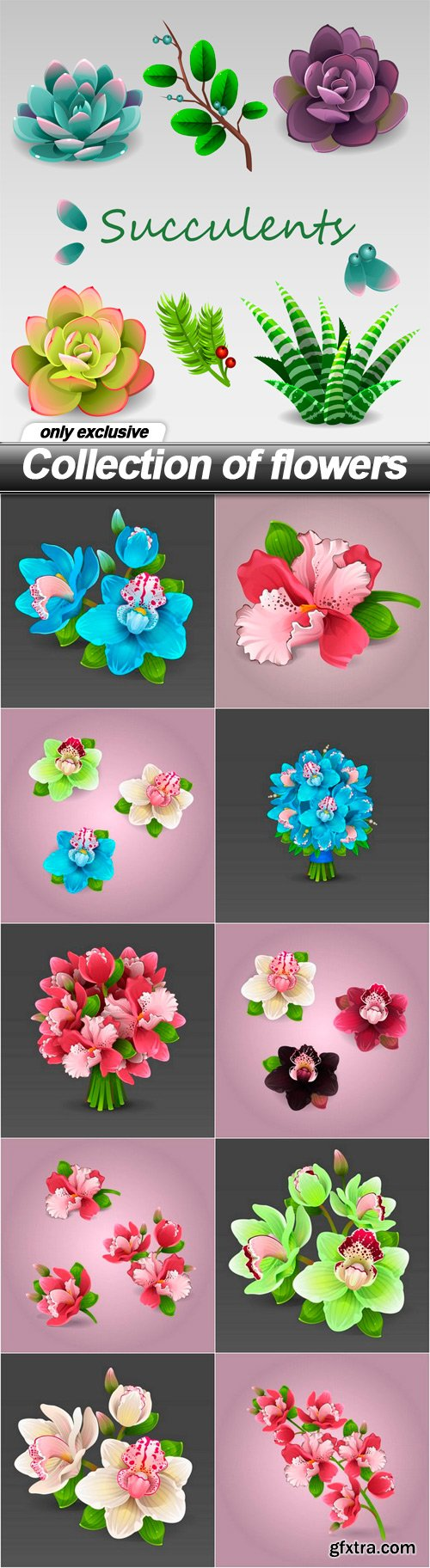 Collection of flowers -