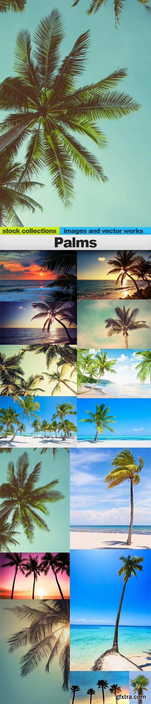 Palms, 15 x UHQ JPEG