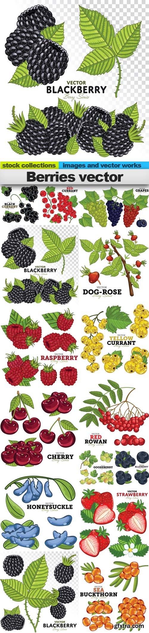 Berries vector, 15 x EPS