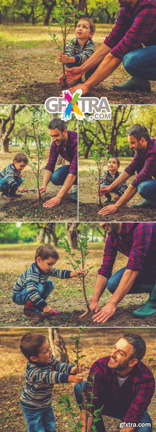 Stock Photo - Father & Son Gardening