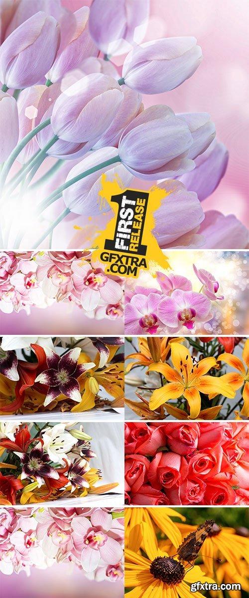 Stock Photo Spring flower background