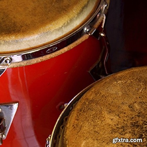 Ableton Latin Percussion v9.0.32873 for Ableton Live v9.x-DVT