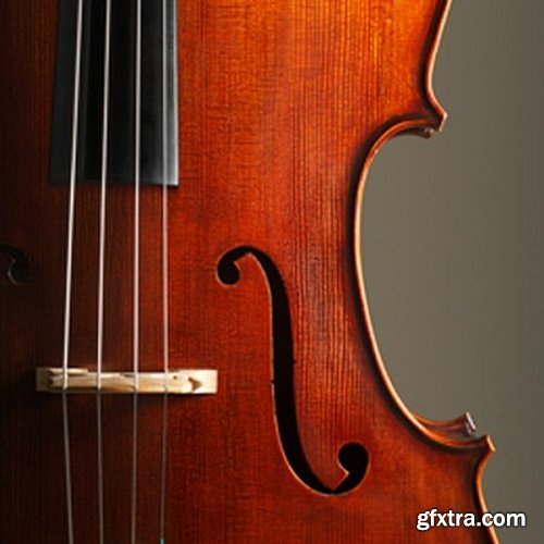 Ableton Orchestral Strings v9.0.38128 for Ableton Live v9.x-DVT