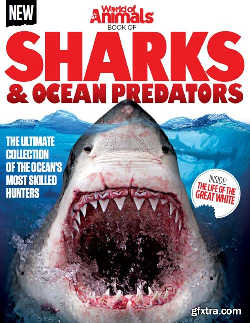 World of Animals - Book of Sharks & Ocean Predators