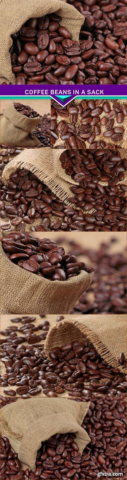Coffee beans in a sack 7x JPEG