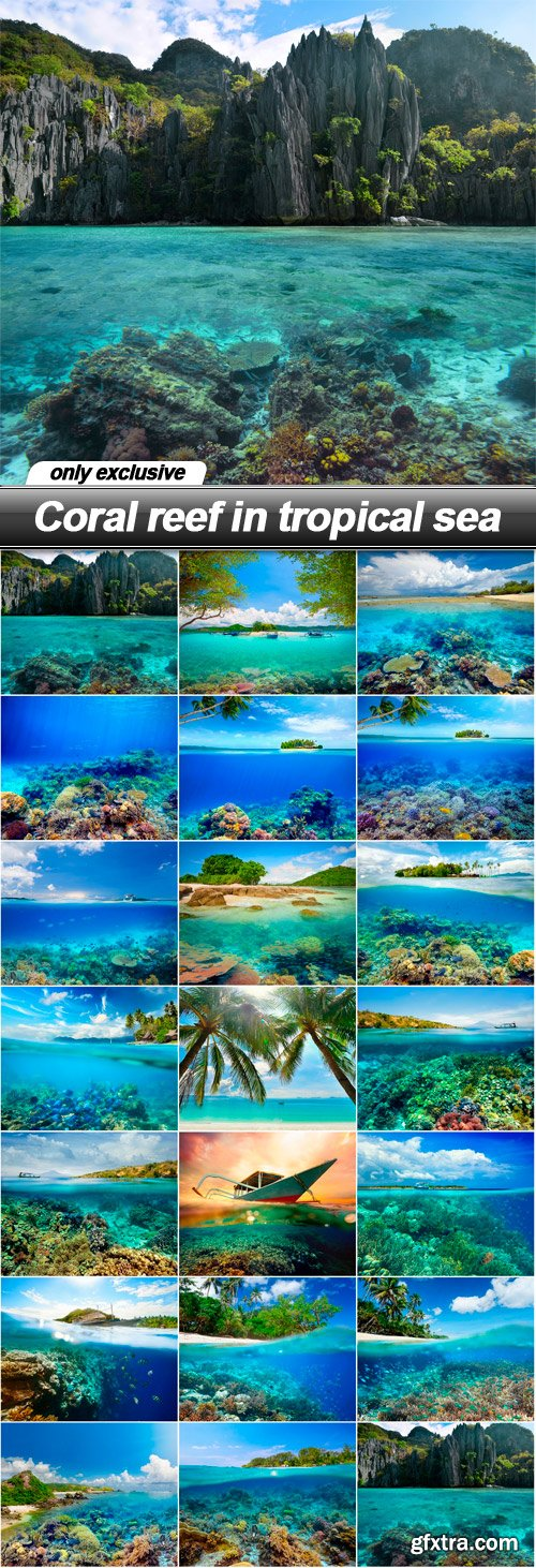 Coral reef in tropical sea - 20 UHQ JPEG