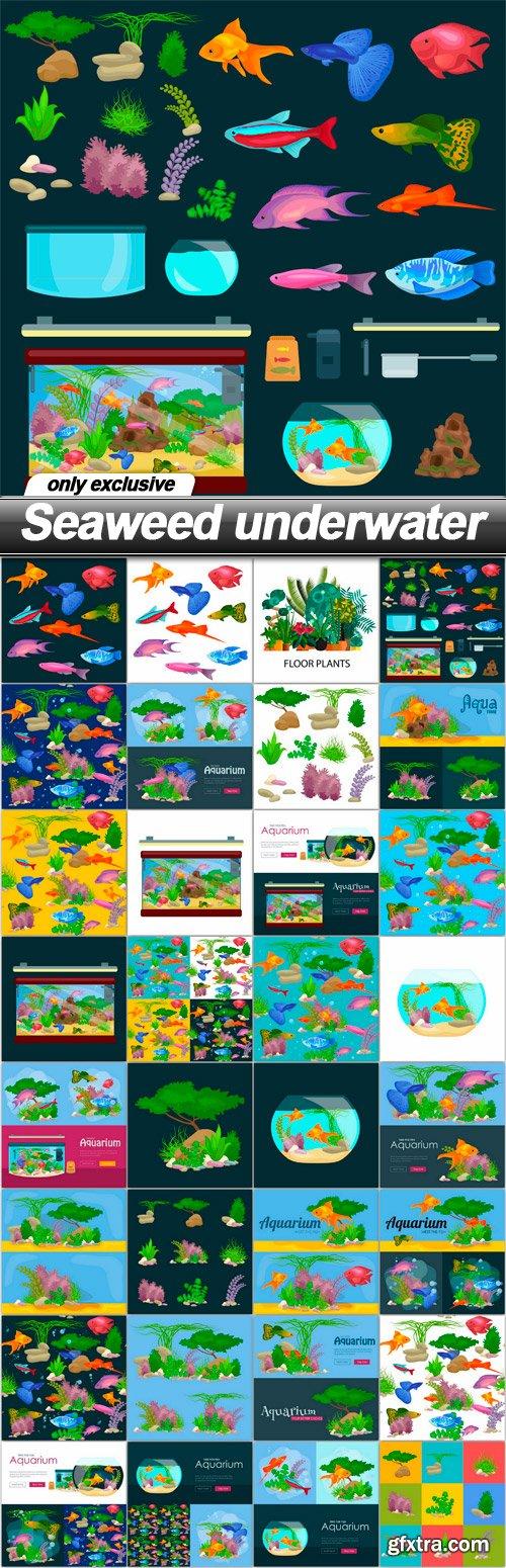 Seaweed underwater - 32 EPS » Vector, Photoshop PSDAfter Effects ...