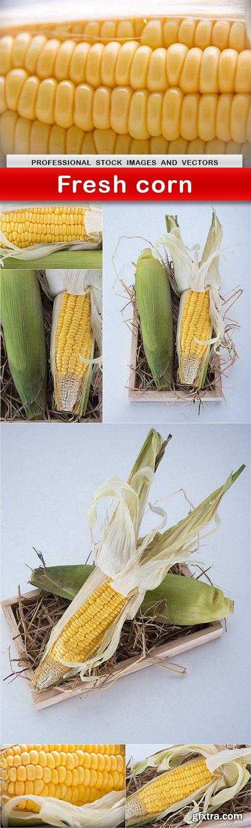 Fresh corn - 7 UHQ JPEG