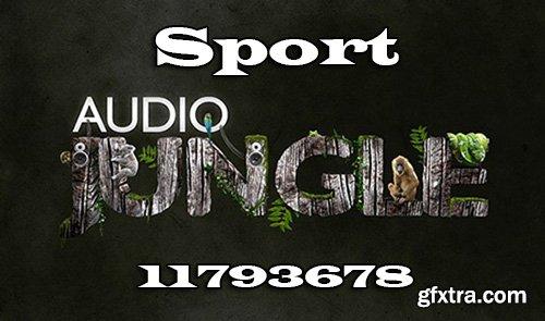 Audiojungle Sport 11793678