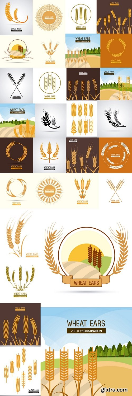 Wheat ears design