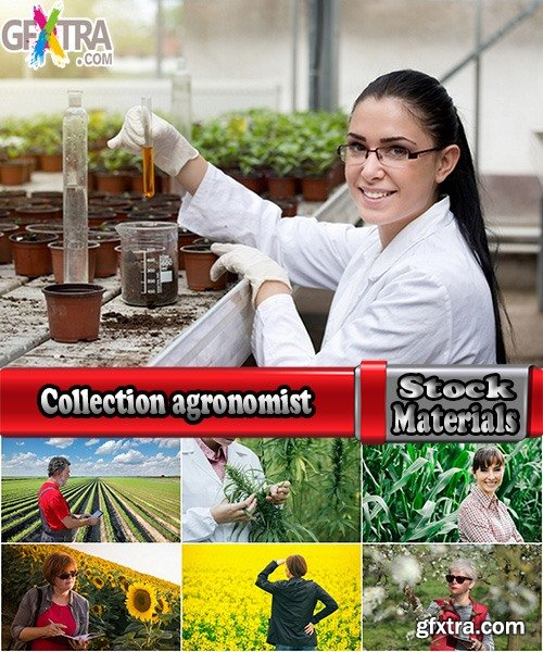 Collection agronomist farmer checking agricultural crop breeding 25 HQ Jpeg