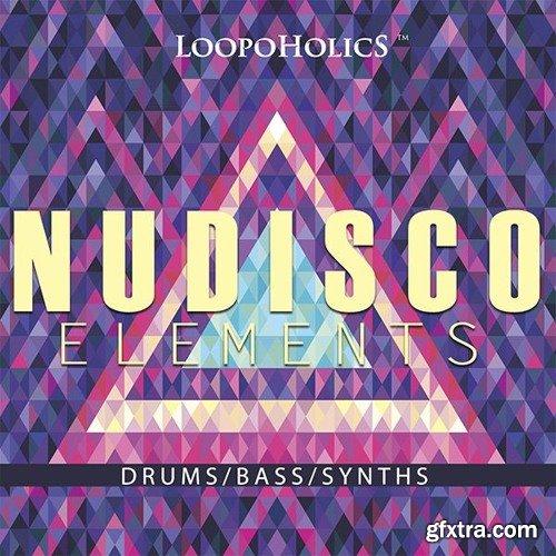 Loopoholics Nu Disco Elements Loops WAV-DISCOVER