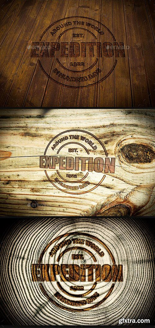 GraphicRiver - Photorealistic Logo Mock-Up Pack 2 - Wood Edition