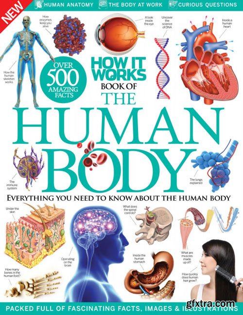 How It Works - Book Of The Human Body 7th Edition