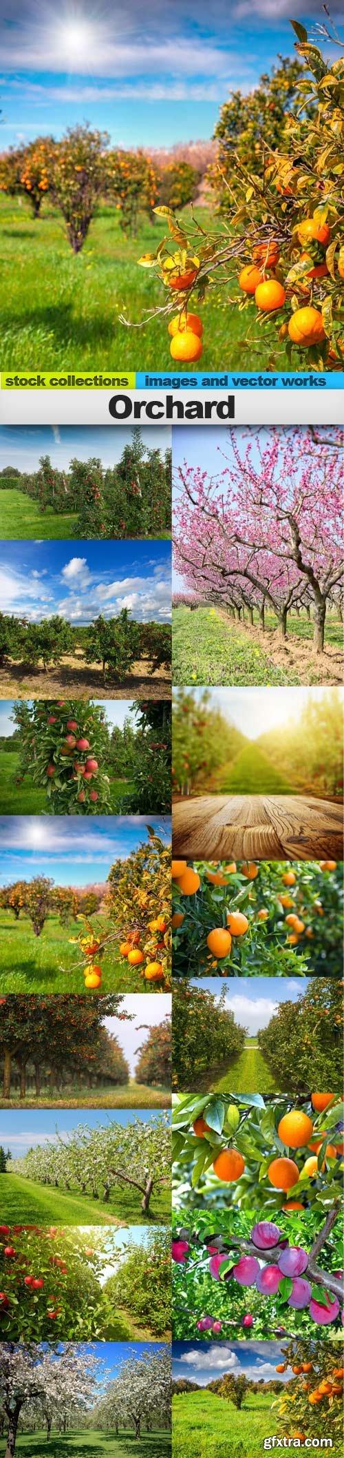 Orchard, 15 x UHQ JPEG