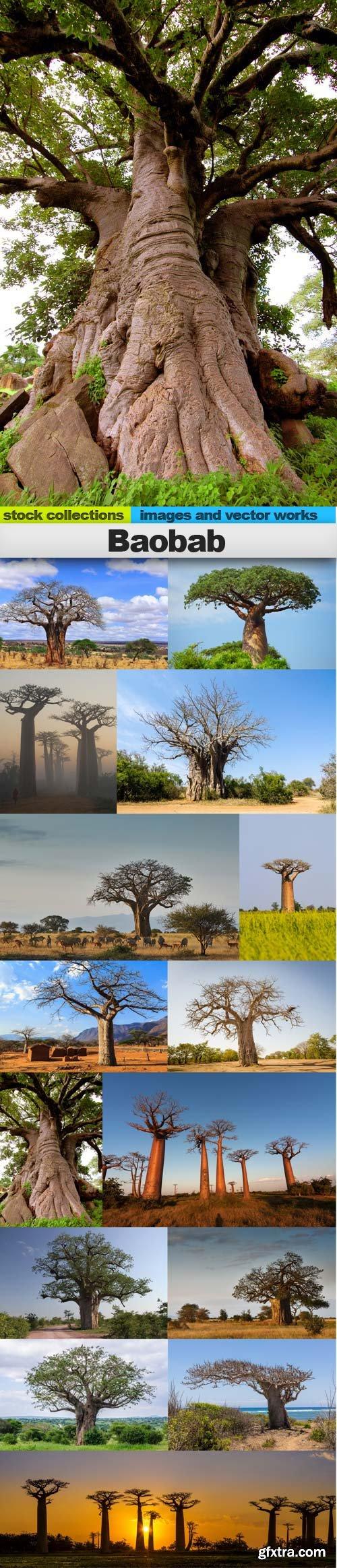 Baobab tree, 15 x UHQ JPEG