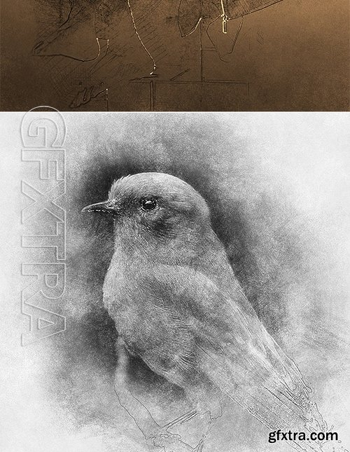 GraphicRiver - Sketch Photoshop Action (With 3D Pop Out Effect) 17361333