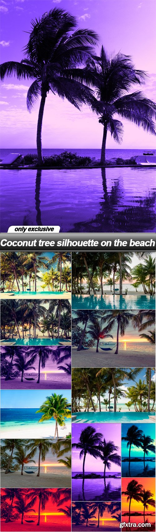 Coconut tree silhouette on the beach - 13 UHQ JPEG